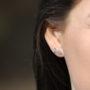 silver fish stud earrings