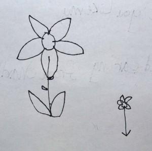 Charlies Drawing