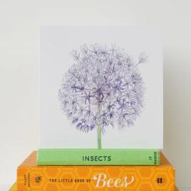 Allium greetings card