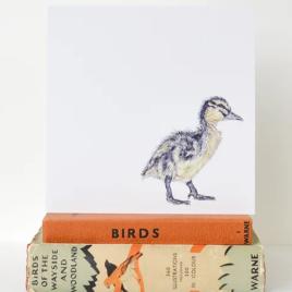Duckling greetings card